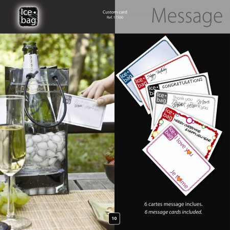 Ice bag w-6  Message Cards # 4209